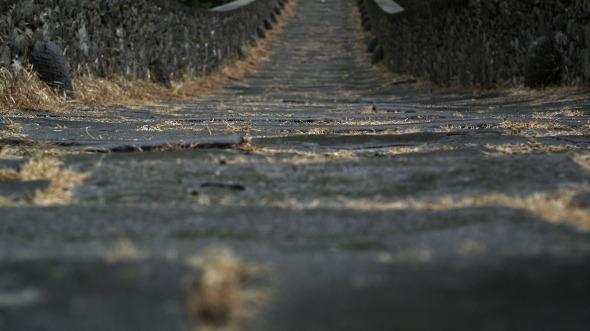 Ponte-del-Diavolo Il ponte del diavolo di Borgo a Mozzano