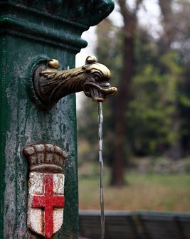 Vedovella-267x336 Il lago Gerundo e la leggenda del drago Tarantasio a Milano