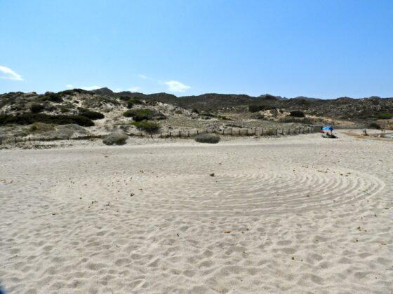 DSCN7657-560x420 Aggiornamento: Il mistero dei cerchi nella sabbia.