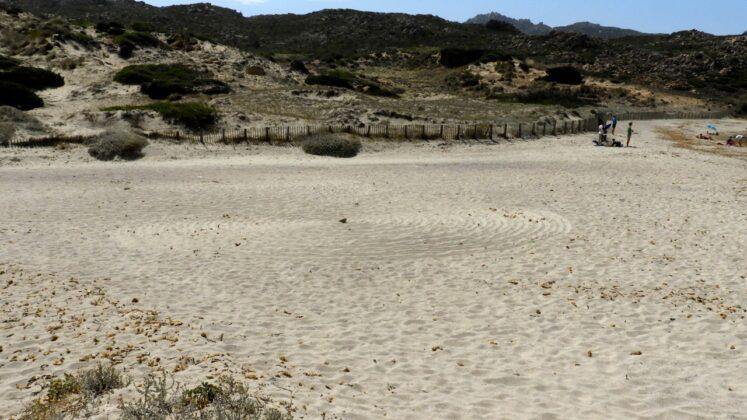 DSCN7677-747x420 Aggiornamento: Il mistero dei cerchi nella sabbia.