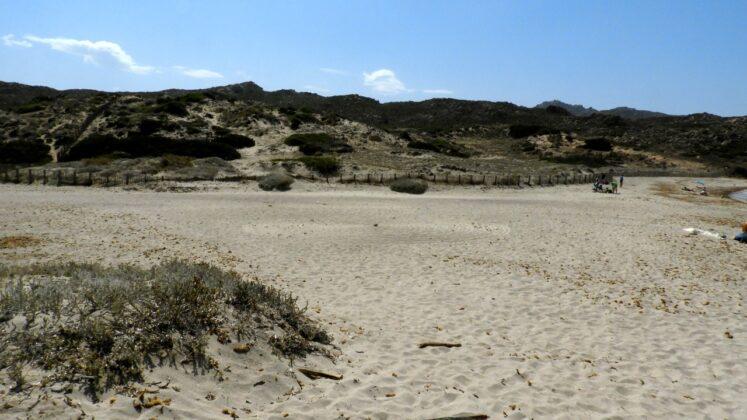 DSCN7681-747x420 Aggiornamento: Il mistero dei cerchi nella sabbia.